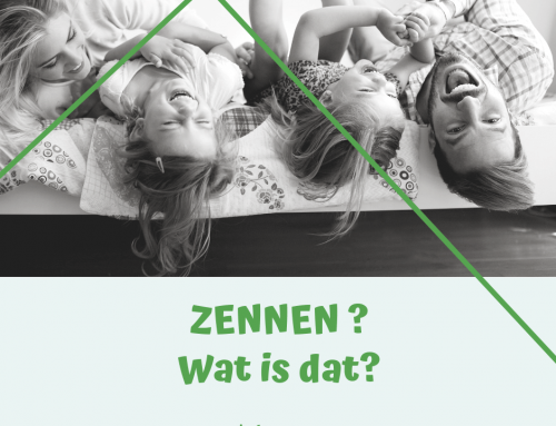 Wat is zennen?
